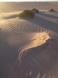 κόκκινη άμμος κυματώσεων προτύπων αμμόλοφων κινηματογραφήσεων σε πρώτο πλάνο Στοκ Εικόνα