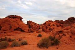 κόκκινη άμμος στοκ εικόνες