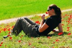 Κόκκινη άνθηση λουλουδιών Anemone Στοκ φωτογραφία με δικαίωμα ελεύθερης χρήσης
