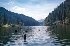 Κόκκινη λίμνη - Lacul Rosu στοκ φωτογραφία με δικαίωμα ελεύθερης χρήσης