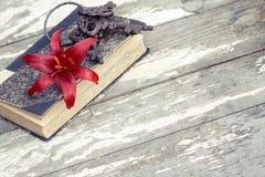 Κόκκινη αποσαφήνιση, βιβλίο και κλειδιά κρίνων στοκ εικόνες με δικαίωμα ελεύθερης χρήσης