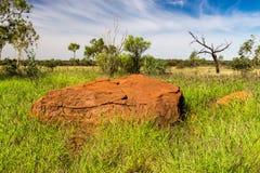 Κόκκινη αυστραλιανή πέτρα στη χλόη Στοκ Φωτογραφίες