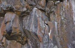 Κόκκινη αύξηση λειχήνων στους τοίχους βράχου ροής λάβας Στοκ Εικόνες