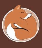 Κόκκινη αλεπού με cub Στοκ φωτογραφία με δικαίωμα ελεύθερης χρήσης