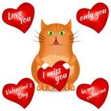 Κόκκινη γάτα με μια κόκκινη καρδιά Στοκ εικόνες με δικαίωμα ελεύθερης χρήσης