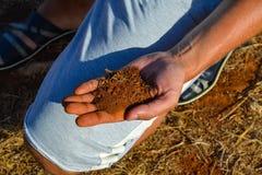Κόκκινη γη στην παλάμη του χεριού σας Κύπρος Στοκ Φωτογραφία