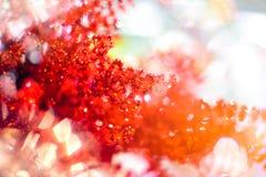 Κόκκινη διακόσμηση για το χριστουγεννιάτικο δέντρο Λαμπρό ελαφρύ υπόβαθρο διακοσμήσεων Χριστουγέννων φλογών εύθυμο με το διάστημα Στοκ εικόνες με δικαίωμα ελεύθερης χρήσης
