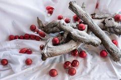 Κόκκινη διακόσμηση σφαιρών και Χριστουγέννων στοκ φωτογραφία με δικαίωμα ελεύθερης χρήσης