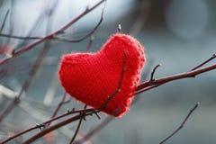 Κόκκινη εορταστική όμορφη πλεκτή ένωση καρδιών μεταξύ των κλάδων ο Στοκ Εικόνες
