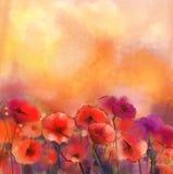 Κόκκινη ζωγραφική λουλουδιών παπαρουνών Watercolor διανυσματική απεικόνιση