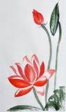 Κόκκινη ζωγραφική watercolor Lotus ελεύθερη απεικόνιση δικαιώματος