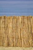 κόκκινη θάλασσα καλάμων καλυβών παραλιών Στοκ Εικόνα