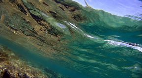 κόκκινη θάλασσα σκοπέλων Στοκ Εικόνες