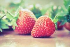 Κόκκινη θέση φραουλών στο πιάτο, εκλεκτής ποιότητας τόνος Στοκ Φωτογραφία