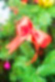 Κόκκινη διακόσμηση κορδελλών Defocused στο χριστουγεννιάτικο δέντρο Στοκ εικόνα με δικαίωμα ελεύθερης χρήσης