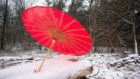 Κόκκινη ιαπωνική ομπρέλα στο χιονώδες κούτσουρο Στοκ Εικόνα