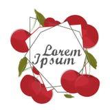 Κόκκινη κάρτα κερασιών, πλαίσιο Χάραξη, φρούτα σχεδίων Εκλεκτής ποιότητας διάνυσμα Στοκ Εικόνα