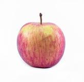 Κόκκινη - κίτρινο μήλο σε ένα άσπρο υπόβαθρο - μπροστινή άποψη στοκ εικόνες με δικαίωμα ελεύθερης χρήσης