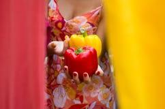 Κόκκινη και κίτρινη peperoni πάπρικα Στοκ Φωτογραφίες