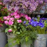 Κόκκινη και μπλε ρύθμιση λουλουδιών άνοιξη: anemones, ranoncullus Στοκ εικόνα με δικαίωμα ελεύθερης χρήσης