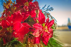 Κόκκινη και πράσινη ρύθμιση Χριστουγέννων στοκ εικόνα