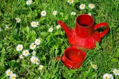 Κόκκινη κανάτα φλυτζανιών αργίλου εκλεκτής ποιότητας στο λιβάδι μαργαριτών Στοκ Φωτογραφία