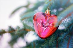 Κόκκινη καρδιά στο δέντρο πεύκων Στοκ εικόνες με δικαίωμα ελεύθερης χρήσης