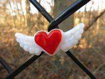 Κόκκινη καρδιά τα φτερά που κεντροθετούνται με στο φράκτη συνδέσεων αλυσίδων Στοκ φωτογραφία με δικαίωμα ελεύθερης χρήσης