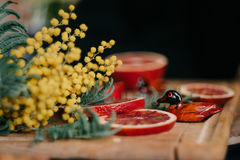 Κόκκινη κινεζική γλώσσα παπιών πορτοκαλιών, mimosa και δύο αναμνηστικών Στοκ φωτογραφία με δικαίωμα ελεύθερης χρήσης