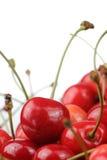Κόκκινη κινηματογράφηση σε πρώτο πλάνο γλυκών κερασιών στο άσπρο υπόβαθρο Στοκ εικόνα με δικαίωμα ελεύθερης χρήσης