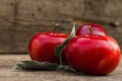 Κόκκινη κινηματογράφηση σε πρώτο πλάνο μήλων στο θολωμένο υπόβαθρο Στοκ φωτογραφία με δικαίωμα ελεύθερης χρήσης