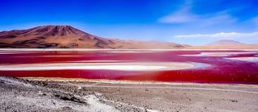 Κόκκινη λίμνη - Laguna Colorada Στοκ Φωτογραφίες
