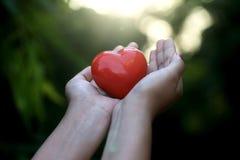 Κόκκινη μορφή καρδιών στα χέρια ενάντια σε πράσινο Στοκ φωτογραφίες με δικαίωμα ελεύθερης χρήσης