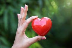 Κόκκινη μορφή καρδιών στα χέρια ενάντια σε πράσινο Στοκ Εικόνα