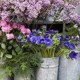 Κόκκινη μπλε ρύθμιση λουλουδιών άνοιξη: anemones, ranoncullus και Στοκ εικόνα με δικαίωμα ελεύθερης χρήσης