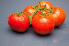 Κόκκινη ντομάτα, με τις πτώσεις του νερού που δείχνει τη φρεσκάδα και την υγεία στοκ εικόνες με δικαίωμα ελεύθερης χρήσης