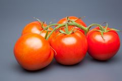 Κόκκινη ντομάτα, με τις πτώσεις του νερού που δείχνει τη φρεσκάδα και την υγεία στοκ φωτογραφίες