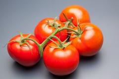 Κόκκινη ντομάτα, με τις πτώσεις του νερού που δείχνει τη φρεσκάδα και την υγεία στοκ εικόνα με δικαίωμα ελεύθερης χρήσης