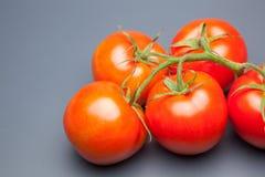 Κόκκινη ντομάτα, με τις πτώσεις του νερού που δείχνει τη φρεσκάδα και την υγεία στοκ εικόνα