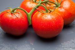 Κόκκινη ντομάτα, με τις πτώσεις του νερού που δείχνει τη φρεσκάδα και την υγεία στοκ φωτογραφία