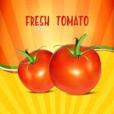 κόκκινη ντομάτα Ρεαλιστικό κόκκινο διανυσματικό έμβλημα ντοματών ελεύθερη απεικόνιση δικαιώματος