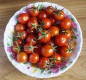 Κόκκινη ντομάτα στο πιάτο Στοκ Εικόνες