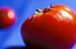κόκκινη ντομάτα Στοκ Φωτογραφία