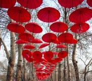 κόκκινη ομπρέλα Στοκ Φωτογραφία