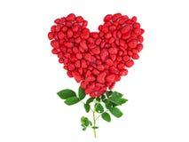 Κόκκινη πέτρα μορφής καρδιών με το ροδαλό φύλλο στοκ εικόνα