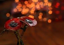 Κόκκινη παπαρούνα Στοκ φωτογραφίες με δικαίωμα ελεύθερης χρήσης