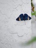 Κόκκινη πεταλούδα κροτίδων Στοκ εικόνες με δικαίωμα ελεύθερης χρήσης