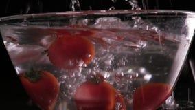 Κόκκινη πτώση και επιπλέον σώμα ντοματών στο νερό, μαύρο υπόβαθρο, σε αργή κίνηση απόθεμα βίντεο