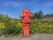Κόκκινη πυρκαγιά Στοκ εικόνα με δικαίωμα ελεύθερης χρήσης