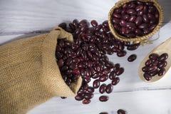 Κόκκινη ριζική ποικιλία cargamanto φασολιών ομάδας των βακκίνιων κοινών φασολιών στοκ εικόνα με δικαίωμα ελεύθερης χρήσης